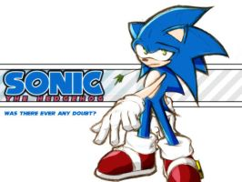 Sonic by Robato