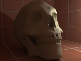 Terra Cotta Skull by IG-64