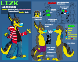 Lizks Reference Sheet 3 by LizkMB