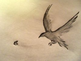 . crow and a butterfly . by luchediluna
