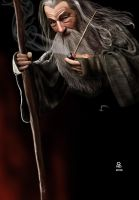 Gandalf The Grey by Ondjage