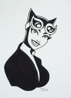 Catwoman by TheBlackCat-Gallery