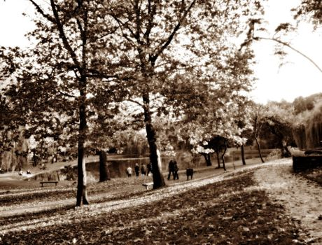 Walk in the park 3 by adrika513