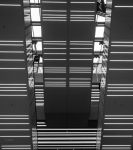 The Downward Escalator by GobboE