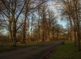 Ormeau Park - Peaceful sunset by Isyala