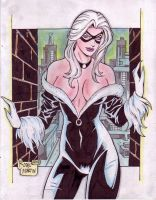 Black Cat (#4) by Rodel Martin by VMIFerrari