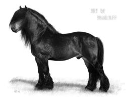 North Swedish Draft horse by Project-Dream
