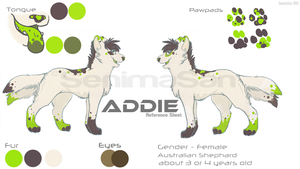 .::New Addie Ref Sheet::. by SenimaSan