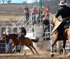Rockley Rodeo 3 by engaged-vacancy