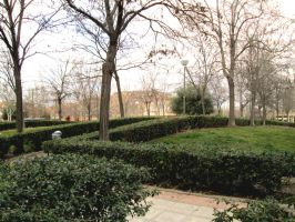 hide garden, madrid by AnnarXy