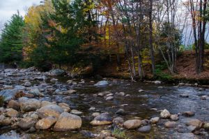 White Mountains  Fall Foliage  203 by FairieGoodMother
