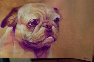 pug by Ryohei-Hase