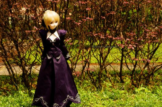 Dollfie first time outdoor by shawnical