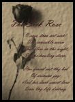 The Sick Rose by wiccan-skiez