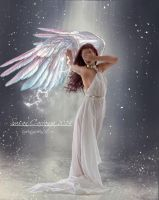 Angelic Winter by SuzieKatz