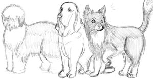 Gale's Dogs by SuirenShinju