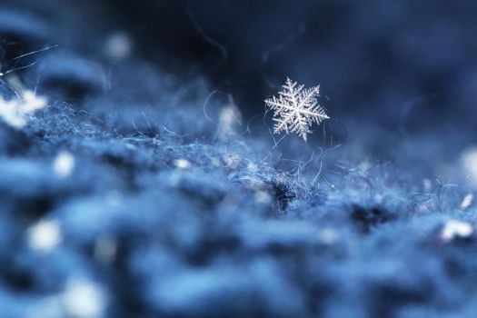 little snowflake by riskonelook