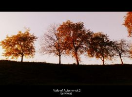 Vally of Autumn vol.2 by niwaj