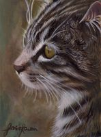 Cat Painting by jillustrates