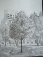 Another Tree Drawing by Chr-ali3