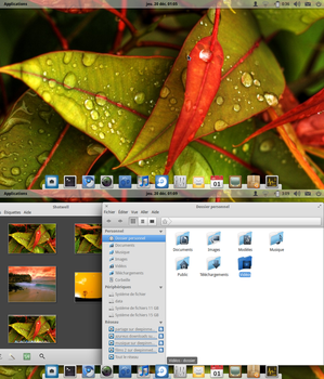 Elementary OS dec 2012 by chicoray