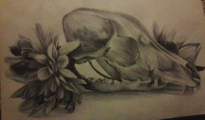 Skull and flowers biro drawing by haloanime97