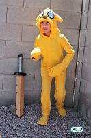 Adventure Time Jake Costume 4 by SugiAi