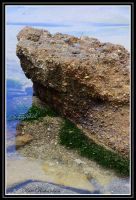 Caves beach 5 by Purple-Dragonfly-Art