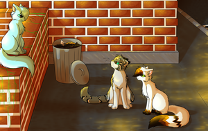City of cats - Sunset chat by CuteFlare