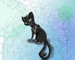 Kuro the Demon Cat by CoughEBeanz