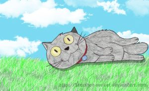 cute grey kitty by Sofia by Starshot-seeker