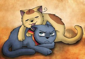 Catalia - Play With Me by catkitte