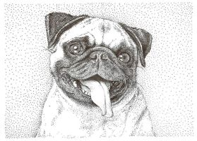 Pugly by ChrisBuckel