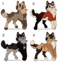 Wolf Adopts 1 by MikacesAdopts