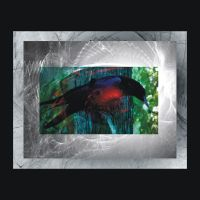 Raven Spirit by Indelibly-Yours