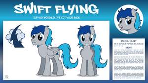MLP OC Bio Sheet : Swift Flying by outlaw4rc