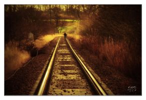 Tracking by SnapperRod