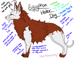Dog Breed: Egyptian Water Dog by Toothlesslover123