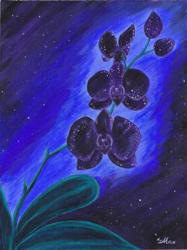 Cosmic Orchid by Rander-MT