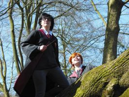 Harry and Ron awesomeness by sannee98