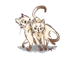 Siamese Buddies by comical-lobster