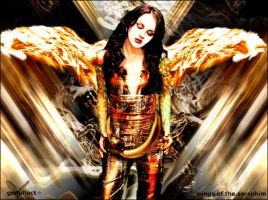 Wings of the Seraphim by genuflect