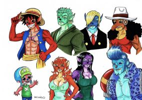 Straw hat experiment pirates by heivais