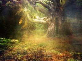 premade background stock : hot tree by inkmlab