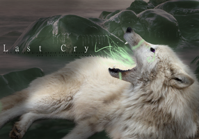 Last cry by Fall-of-rain