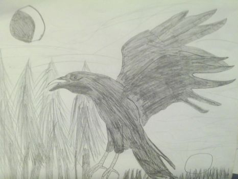 crow at twilight by shadowzero2010