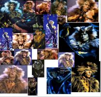 rum tum tugger backround by RobertRipley