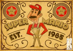 That Guy Mario by roberlan