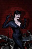 Catwoman: Dead End by pypeworks