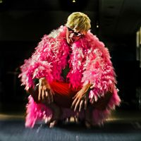DoFlamingo cosplay by YougamiDaisuke